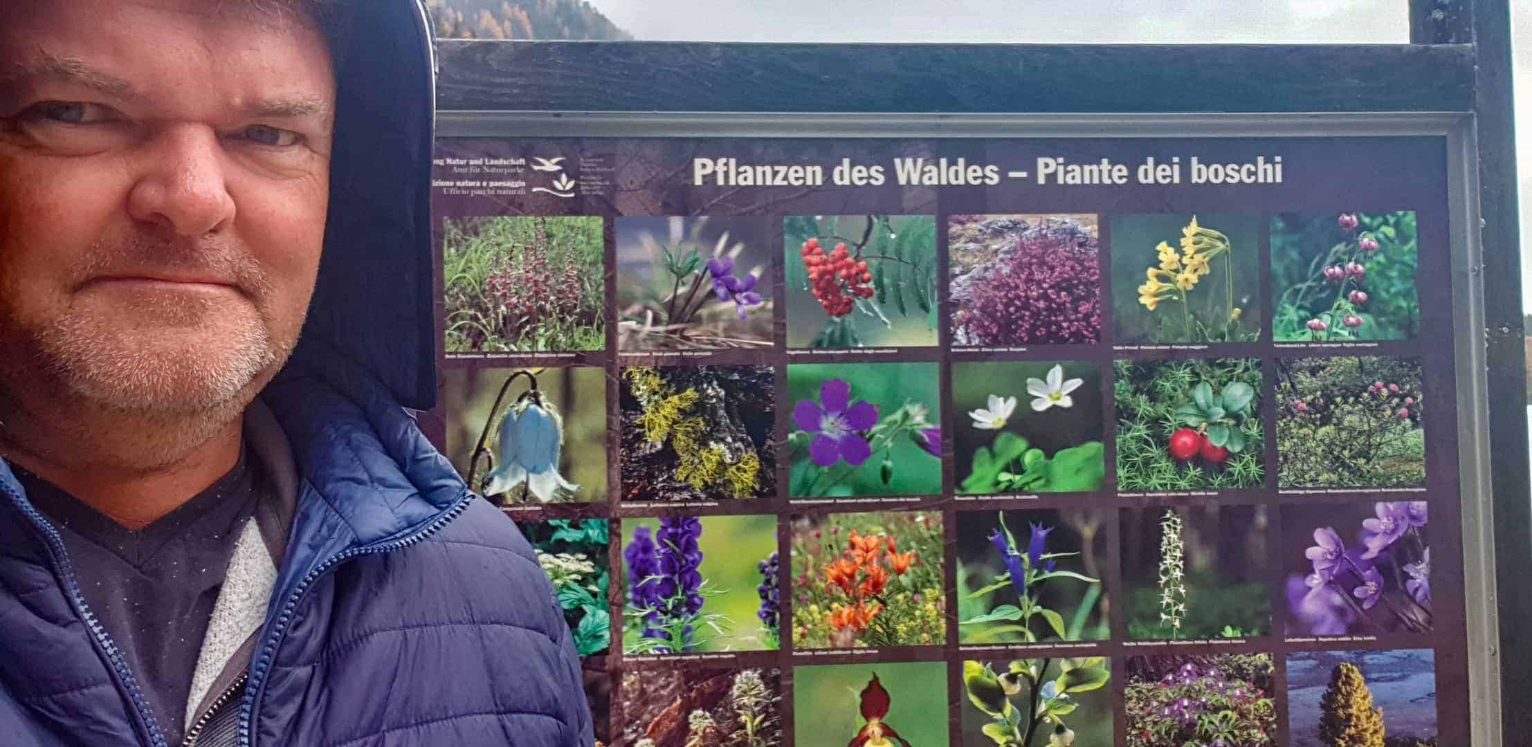 11_Südtirol_Sattlersee_Fauna