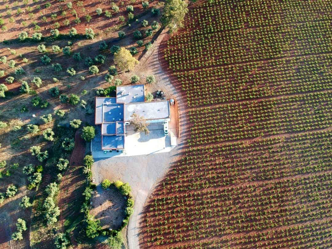 DJI Weingut Spanien