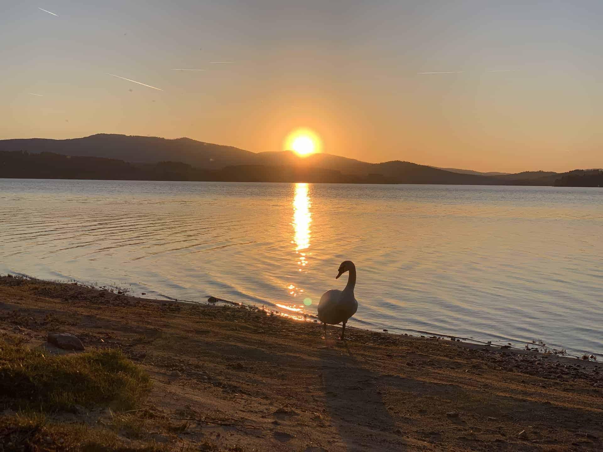 Schöner_Sonnenuntergang_7