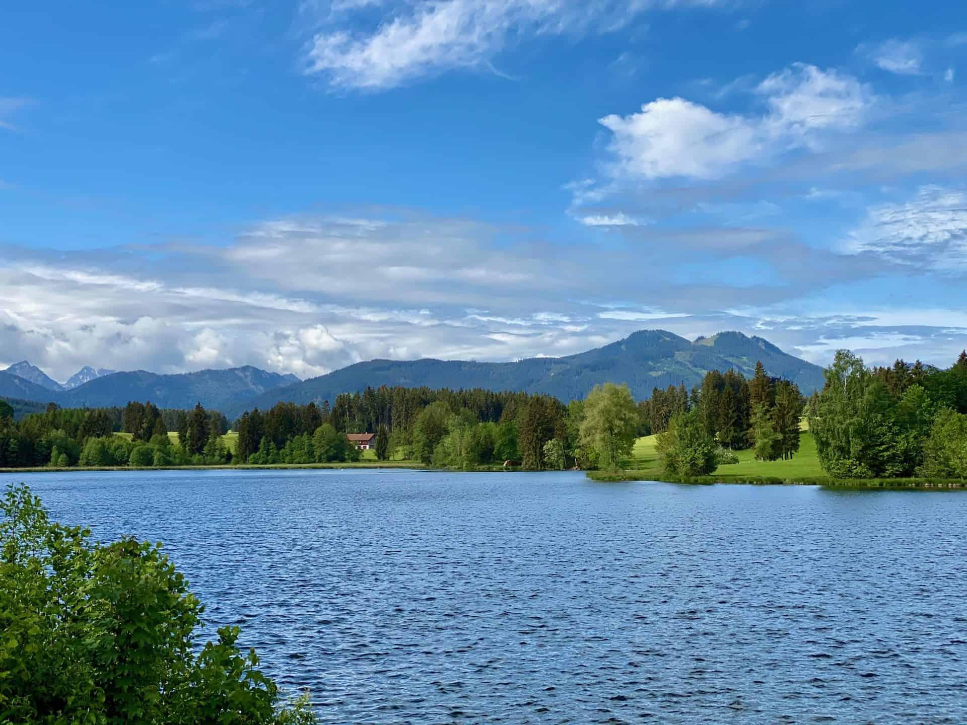 Schwaltenweiher_Blick_auf_die_Berge