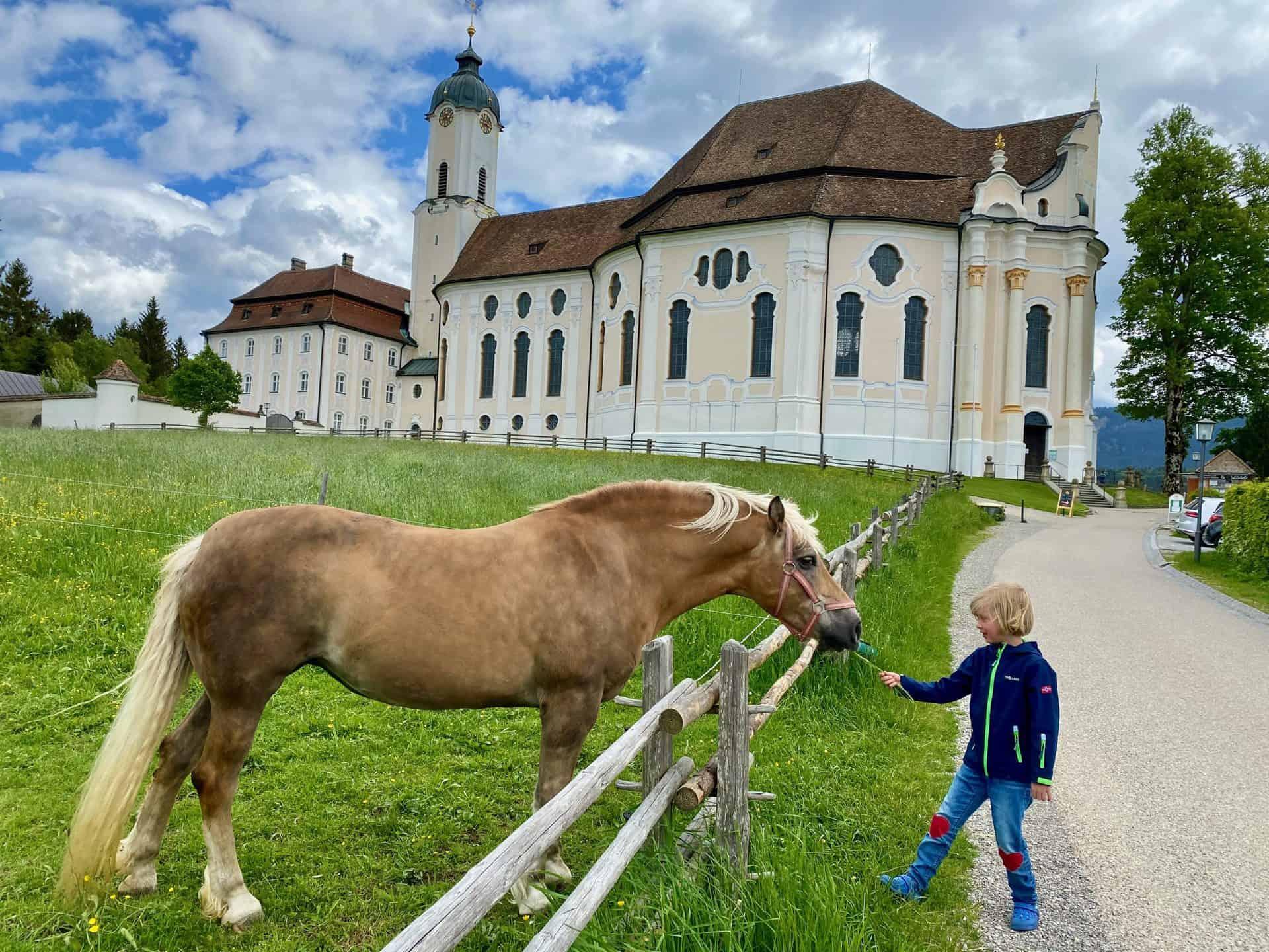 Wieskirche_Rundherum_Pferde_und_schöne_Landschaften