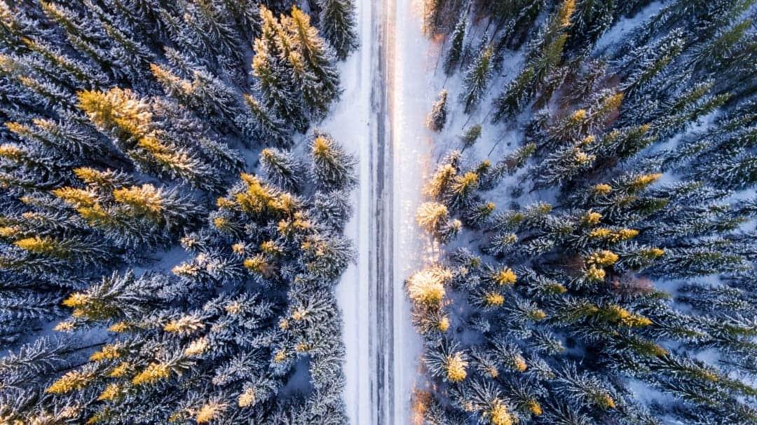 Winter Camping Strasse Wald